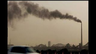 500 Quintals of wood to be burnt in anti-pollution Havan - ABPNEWSTV