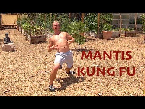 Praying Mantis Kung Fu - AMAZING KATA