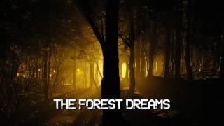 Royalty FreeBackground:The Forest Dreams