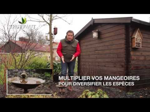 Related video for Jardinier conseil