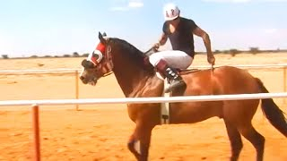 Carreras de caballos en El Molino (Zacatecas, Zacatecas)