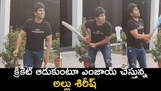 Allu Sirish Playing Cricket During Lockdown  | Stay Home Stay Safe - RAJSHRITELUGU