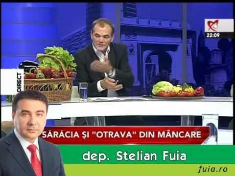 dep. Stelian Fuia in emisiunea REALITATEA LA RAPORT - Realitatea TV