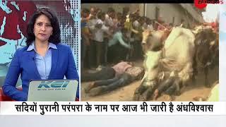 Watch this bizarre superstition followed by people in Madhya Pradesh's Ujjain - ZEENEWS