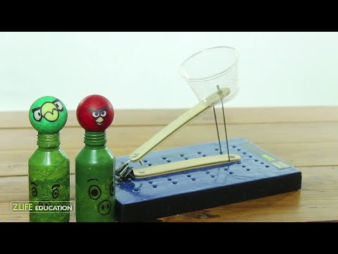 Popsicle Catapult : Engineering Activity for Kids