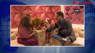 video : गुरूग्राम में कुत्तों का लक्जरी होटल