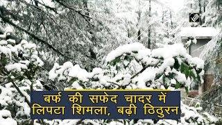 video : शिमला में हुआ ताजा हिमपात, देखें सुंदर दृश्य