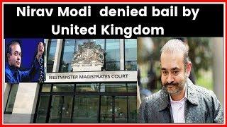 Nirav Modi arrested in London;  Punjab National Bank scam accused denied bail by United Kingdom - ITVNEWSINDIA