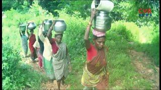 గిరిజన గ్రామాల్లో తాగునీటి గోస : Tribal People Facing Problems with Drinking Water in Srikakulam - CVRNEWSOFFICIAL