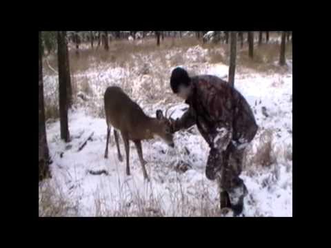 Notre Buck - L'histoire d'un adolescent et de son chevreuil
