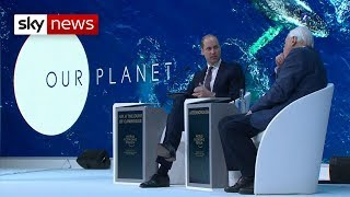 Prince William and Sir David Attenborough on humans 'need to be careful' - SKYNEWS