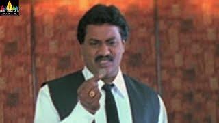 Nenunnanu Movie Scenes | Sunil and MS Narayana Comedy | Telugu Movie Scenes | Sri Balaji Video - SRIBALAJIMOVIES