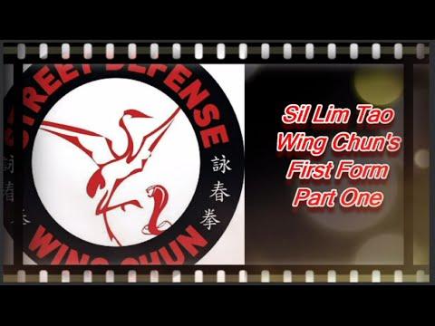 Siu Nim Tao (Sil Lim Tao) Wing Chun's First Empty Hand Form
