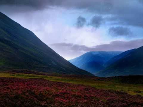 Piano in Spectacular Nature (Instrumental Relaxing Music)