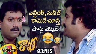 Jr NTR and Sunil Best Comedy Scene | Rakhi Telugu Movie Scenes | Ileana | Charmi | Mango Videos - MANGOVIDEOS