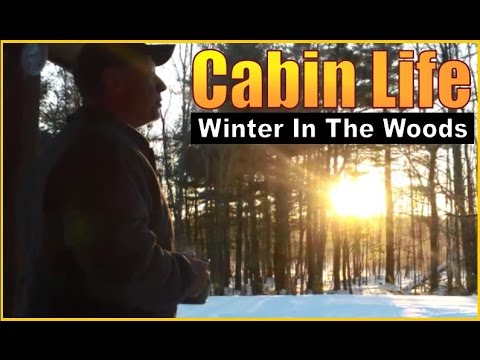 CABIN TIME. Winter In The Woods.