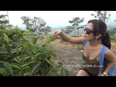 Popular Journey - Menelisik Alam Gunung Gede Pangrango(April 2013)