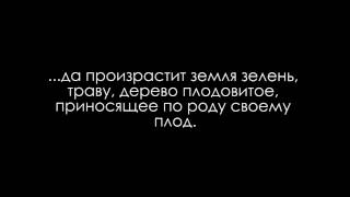 proiskhozhdenie_zhizni