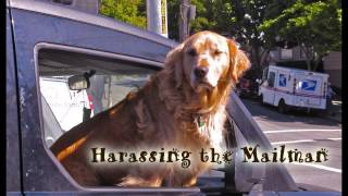 Royalty Free :Harassing the Mailman