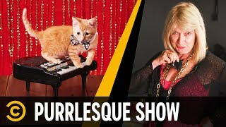 Purrlesque Entertainment: Kitten Dancers - Mini-Mocks - COMEDYCENTRAL