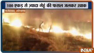 Harayana के फतेहाबाद में लगी भीषण आग, 100 एकड़ से ज्यादा में लगी गेंहू की फसल जलकर खाक - INDIATV