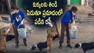 Anchor Rashmi Distributing FOOD For Street Dogs | Rashmi Emotional - RAJSHRITELUGU
