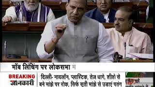 Rajnath Singh puts onus on states for mob lynching incidents - ZEENEWS
