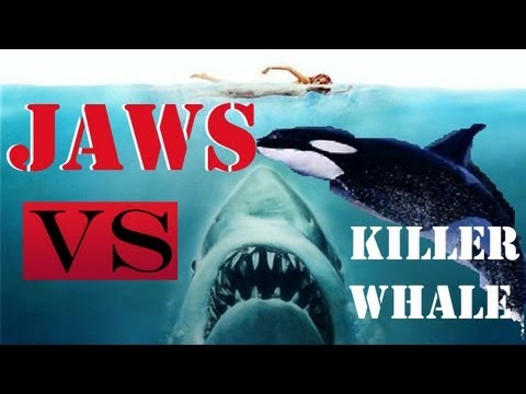 Jaws Unleashed - JAWS VS KILLER WHALE