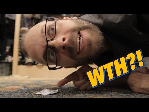 What The Heck Is That?! -