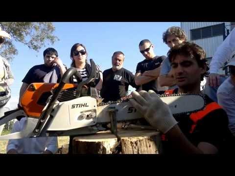 Como afilar la cadena de la motosierra