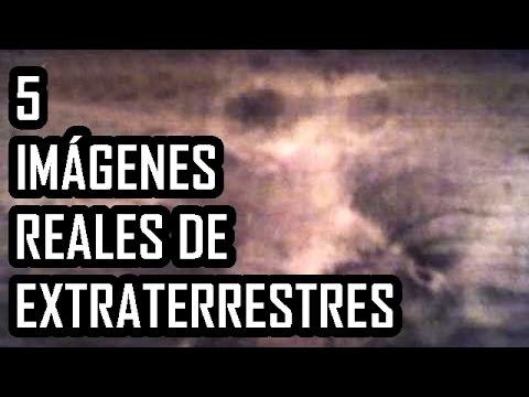 5 imágenes supuestamente reales de extraterrestres