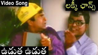 Lucky Chance Telugu Movie Song | Udutha Udutha | Rajendra Prasad | Kanchana - RAJSHRITELUGU
