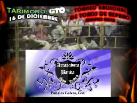TARIMORO TORNEO NACIONAL DE TOROS DE REPARO