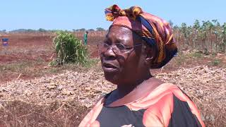 Irrigation Still Rare in Zimbabwe as UN Predicts Drought - VOAVIDEO