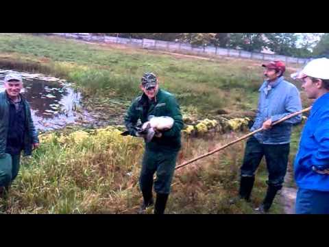 рыбалка в калинковичах