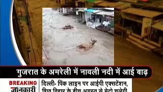 Morning Breaking: Thunderstorm lashes Amreli district in Gujarat - ZEENEWS