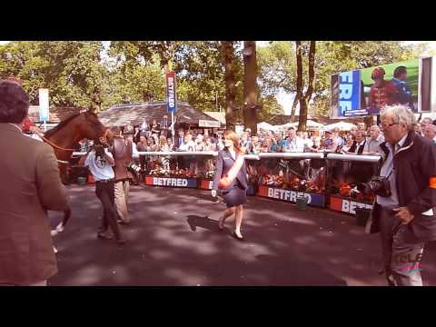 Treacle Events Showreel 2013