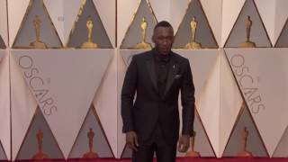 La La Land, Moonlight Win Top Oscar Honors - VOAVIDEO