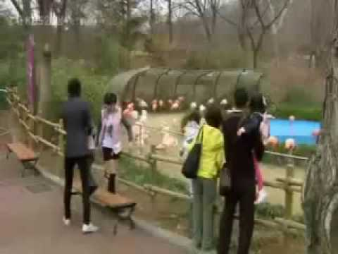 Jun Pyo & Jan Di ~The Zoo Scene