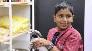 ARUN  Telugu Short Film - YOUTUBE