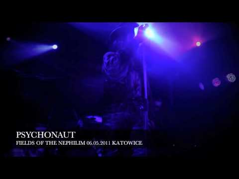Fields of the Nephilim live