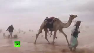 Stormy Saudi desert as you've never seen it before - RUSSIATODAY