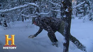 Mountain Men: Tom and Sean Find Signs of Wolves (Season 7, Episode 4) | History - HISTORYCHANNEL