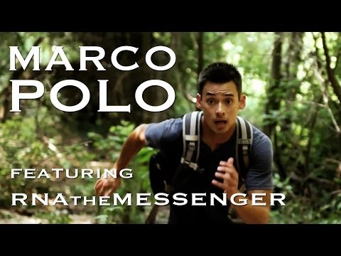 Marco Polo (prod. by Theold)