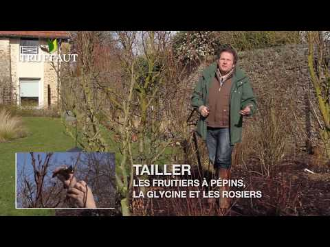 Related video for Conseil du jardinier