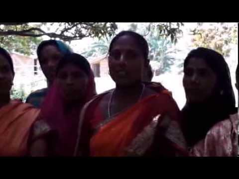Bee Keeping Hindi Jeevika Bihar