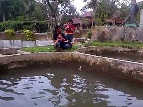 Daffa Mancing ikan Bawal di Bogor