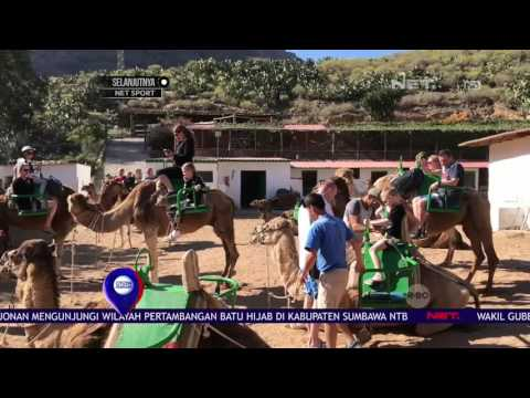 Wisata Unik Menunggangi Unta di Perbukitan Canaria Spanyol - NET12
