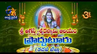 Teerthayatra - Sri Agasthyeswara Swamy Temple, Proddutur Kadapa - తీర్థయాత్ర - 20th October 2014 - ETV2INDIA