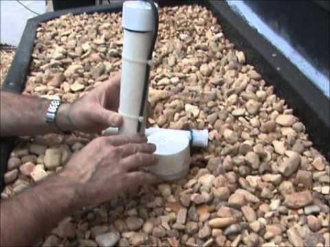 Aquaponics/Hydroponics made simple ( Bell Siphon)